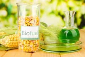 Biodiesel. Oder englisch: Biofuel