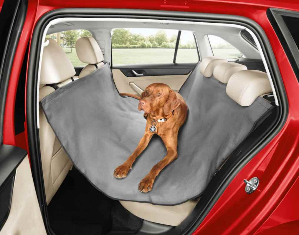 hund im auto kombi bestens f r hundetransport geeignet. Black Bedroom Furniture Sets. Home Design Ideas