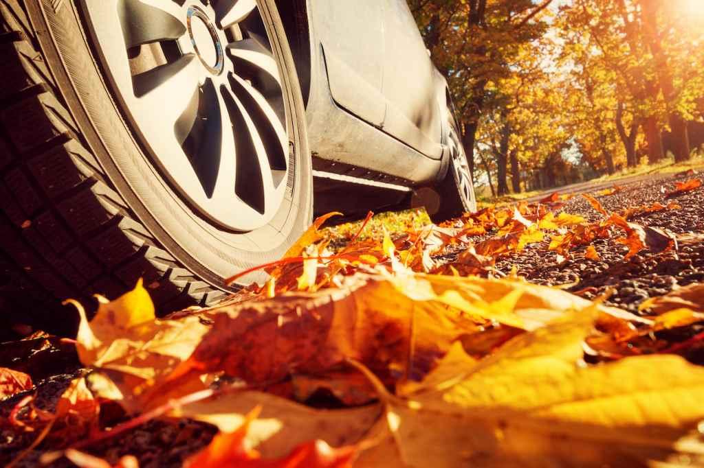 Im Herbst unterwegs